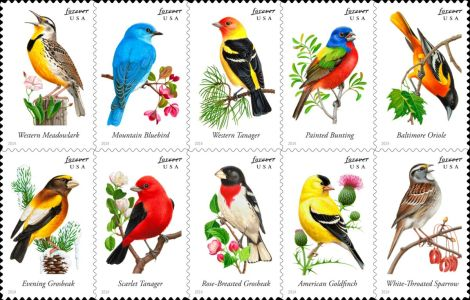 Songbird Stamps