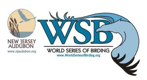 World Series of Birding